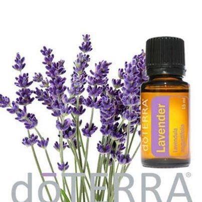 doTERRA Lavendel FOTO mit ÖL